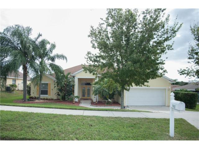 11942 Willow Grove Lane, Clermont, FL 34711 (MLS #G4843658) :: RealTeam Realty