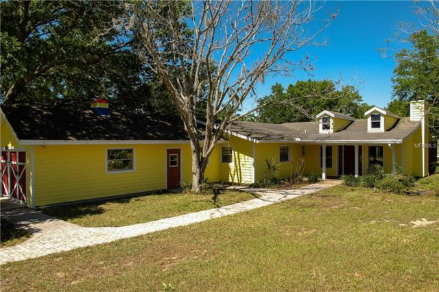 18301 Rose Street, Groveland, FL 34736 (MLS #G4846765) :: Team Pepka