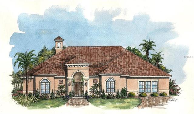 3033 Isola Bella Boulevard, Mount Dora, FL 32757 (MLS #G4847395) :: The Light Team