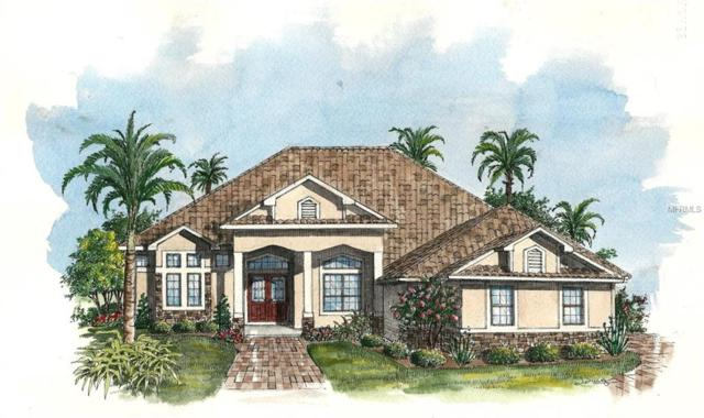3053 Isola Bella Boulevard, Mount Dora, FL 32757 (MLS #G4847397) :: Burwell Real Estate