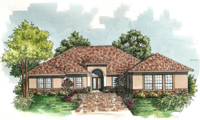 LOT 52 Silent Ridge Drive, Tavares, FL 32778 (MLS #G4847465) :: The Duncan Duo Team