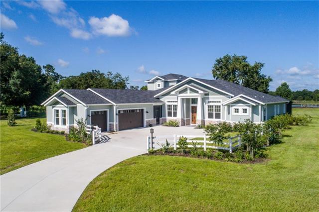 LOT E-15 Live Oak Drive, Deer Island, FL 32778 (MLS #G4848510) :: Delgado Home Team at Keller Williams
