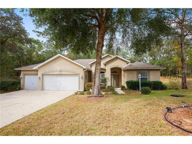 10128 188TH Circle, Dunnellon, FL 34432 (MLS #G4848737) :: Premium Properties Real Estate Services