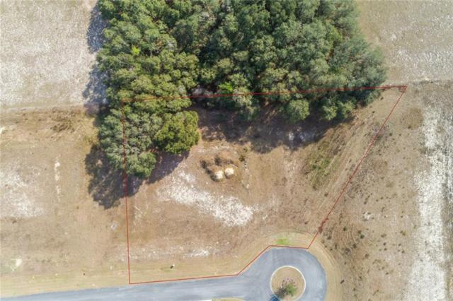 XXXX Highcrest View, Lady Lake, FL 32159 (MLS #G4850131) :: The Duncan Duo Team