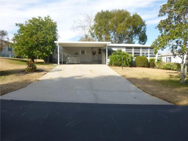16566 96TH Court, Summerfield, FL 34491 (MLS #G4851997) :: The Duncan Duo Team