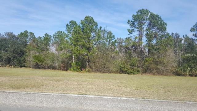 Blue Heron Circle, Tavares, FL 32778 (MLS #G4852666) :: Homepride Realty Services