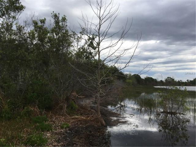 Lake Emma Road, Groveland, FL 34736 (MLS #G4854546) :: Griffin Group