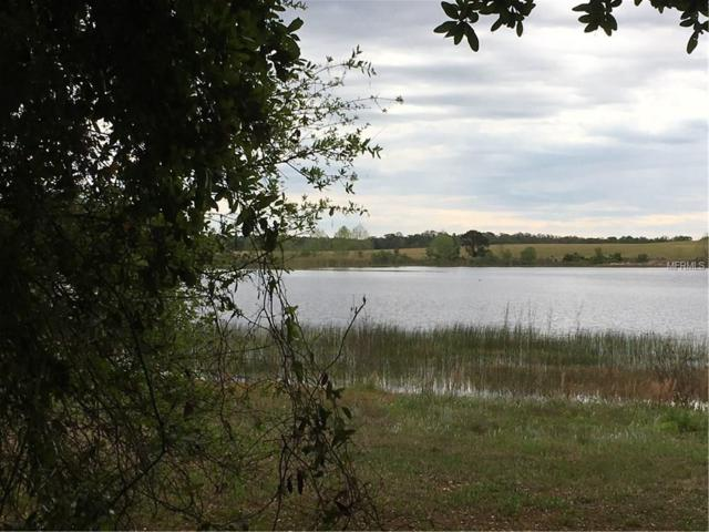 Lake Emma Road, Groveland, FL 34736 (MLS #G4854553) :: Team Pepka