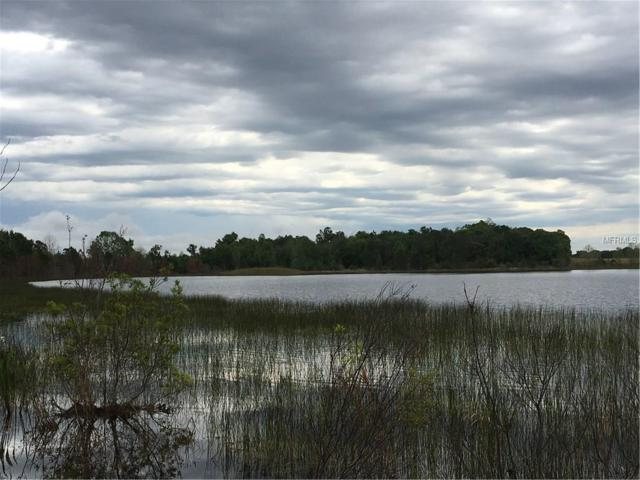 Lake Emma Road, Groveland, FL 34736 (MLS #G4854556) :: Team Pepka