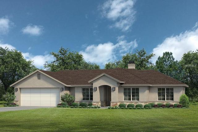 24336 Calusa Boulevard, Eustis, FL 32736 (MLS #G4854578) :: Mark and Joni Coulter | Better Homes and Gardens