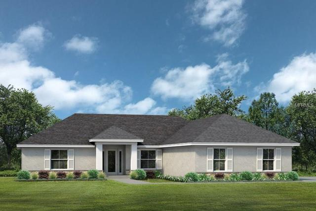 24352 Calusa Boulevard, Eustis, FL 32736 (MLS #G4854580) :: Mark and Joni Coulter | Better Homes and Gardens