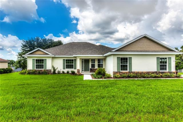 3404 Indian Trail, Eustis, FL 32726 (MLS #G5002582) :: The Duncan Duo Team