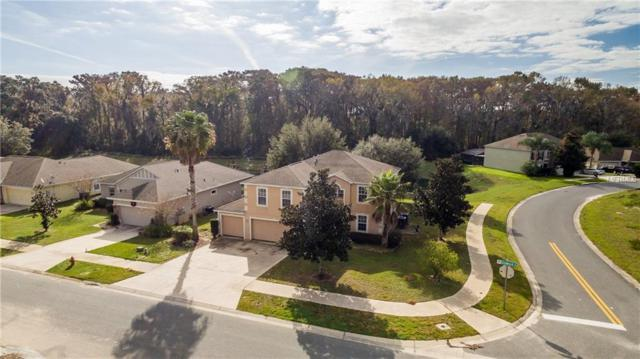 7802 Sloewood Drive, Leesburg, FL 34748 (MLS #G5003433) :: Team Bohannon Keller Williams, Tampa Properties