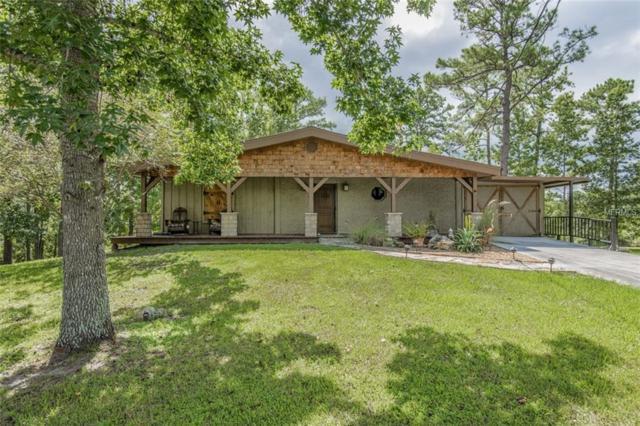 3015 Wolf Branch Road, Mount Dora, FL 32757 (MLS #G5003434) :: Team Bohannon Keller Williams, Tampa Properties