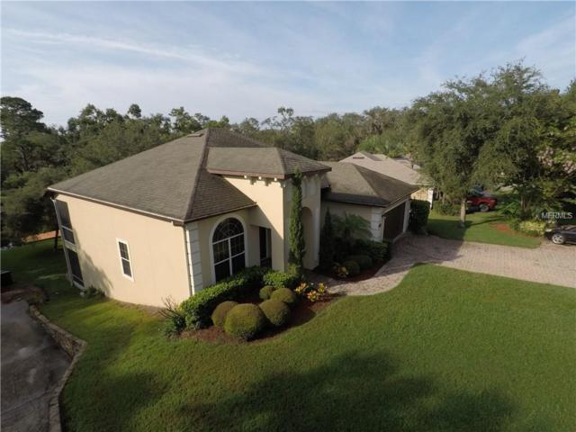 11818 Lakeshore Drive, Clermont, FL 34711 (MLS #G5003703) :: Mark and Joni Coulter | Better Homes and Gardens