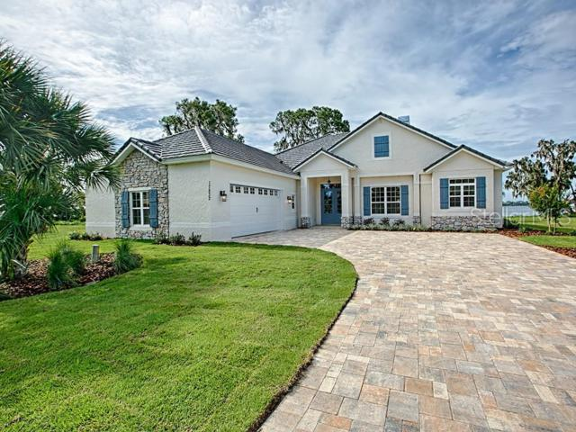 331 Two Lakes Lane, Eustis, FL 32726 (MLS #G5005965) :: Ideal Florida Real Estate