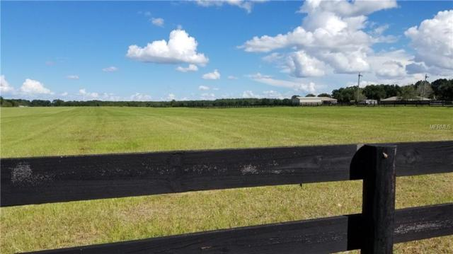 Cr 237, Oxford, FL 34484 (MLS #G5006072) :: Homepride Realty Services