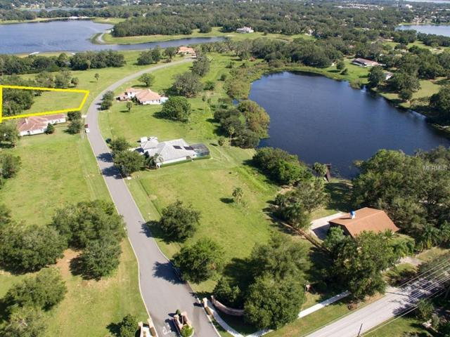 315 Two Lakes Lane, Eustis, FL 32726 (MLS #G5006391) :: Mark and Joni Coulter | Better Homes and Gardens