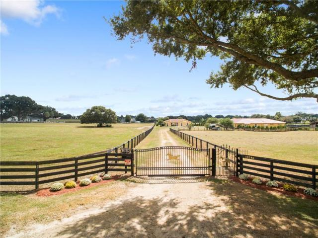 13246 County Road 103, Oxford, FL 34484 (MLS #G5006527) :: GO Realty