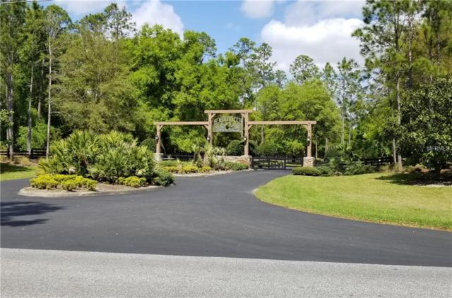 39512 Woodgate Lane, Lady Lake, FL 32159 (MLS #G5006694) :: Mark and Joni Coulter | Better Homes and Gardens