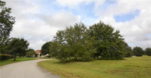 Hidden Horse Way Lot 17, Groveland, FL 34736 (MLS #G5007237) :: RealTeam Realty