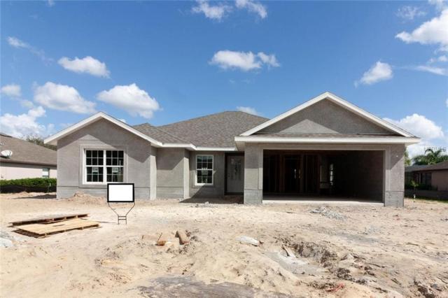 36806 Alaqua Court, Eustis, FL 32736 (MLS #G5007501) :: Burwell Real Estate