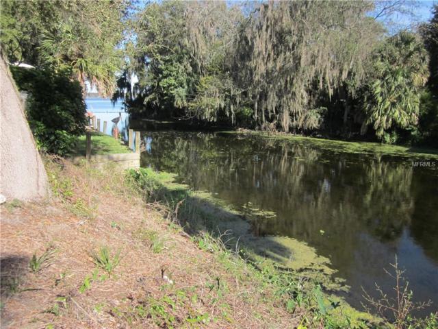 Cr 436, Lake Panasoffkee, FL 33538 (MLS #G5007993) :: Homepride Realty Services