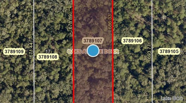 0 Cross Country/Lot 16 Boulevard, Altoona, FL 32702 (MLS #G5008066) :: The Duncan Duo Team