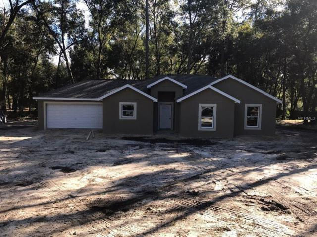 30642 Hoylake Street, Sorrento, FL 32776 (MLS #G5008748) :: The Duncan Duo Team