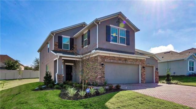 2455 Hastings Boulevard, Clermont, FL 34711 (MLS #G5008800) :: The Duncan Duo Team