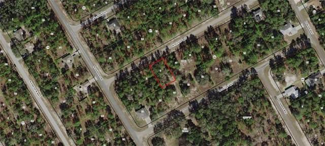 9385 N Del Rio Way, Citrus Springs, FL 34434 (MLS #G5009504) :: Premium Properties Real Estate Services