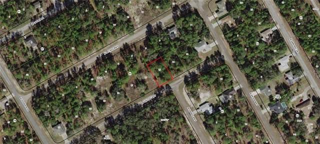 9368 N Dallas Way, Citrus Springs, FL 34434 (MLS #G5009506) :: Premium Properties Real Estate Services