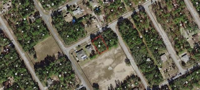 1010 W Drexel Place, Citrus Springs, FL 34434 (MLS #G5009509) :: Premium Properties Real Estate Services
