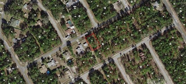 972 W Almont Place, Citrus Springs, FL 34434 (MLS #G5009512) :: Premium Properties Real Estate Services