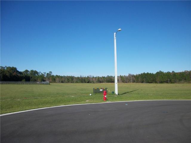 # TBD Cobb Drive, Eustis, FL 32736 (MLS #G5009652) :: The Duncan Duo Team