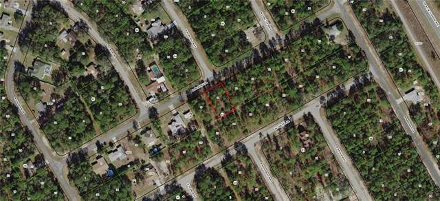 960 W Almont Place, Citrus Springs, FL 34434 (MLS #G5009662) :: The Lersch Group