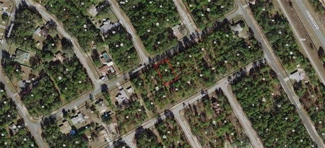 946 W Almont Place, Citrus Springs, FL 34434 (MLS #G5009664) :: The Lersch Group