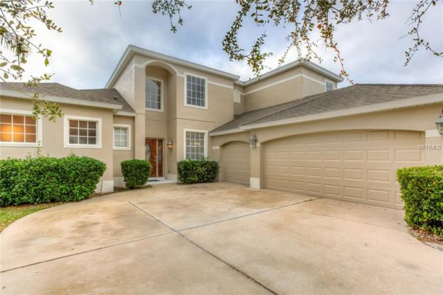 5288 Rishley Run Way, Mount Dora, FL 32757 (MLS #G5009684) :: Team Touchstone