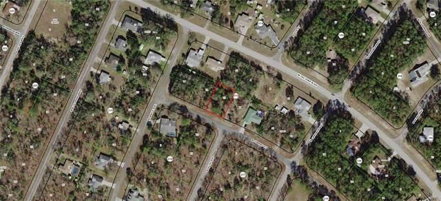 10195 N Conrad Point, Citrus Springs, FL 34434 (MLS #G5009739) :: Everlane Realty