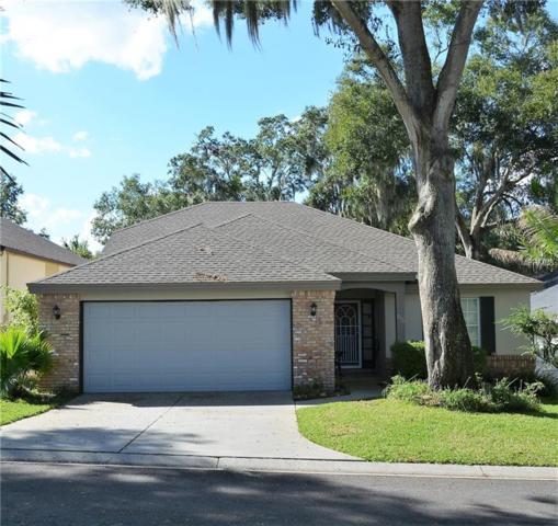 575 S Sandlake Court, Mount Dora, FL 32757 (MLS #G5009946) :: RealTeam Realty