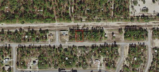 3237 W Wilhelm Street, Citrus Springs, FL 34433 (MLS #G5009958) :: Bob Paulson with Vylla Home