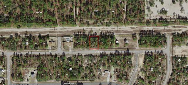 3221 W Wilhelm Street, Citrus Springs, FL 34433 (MLS #G5009959) :: Bob Paulson with Vylla Home