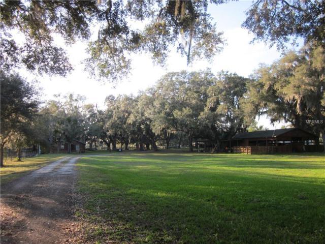 1010 Cr 416N, Lake Panasoffkee, FL 33538 (MLS #G5010693) :: Jeff Borham & Associates at Keller Williams Realty
