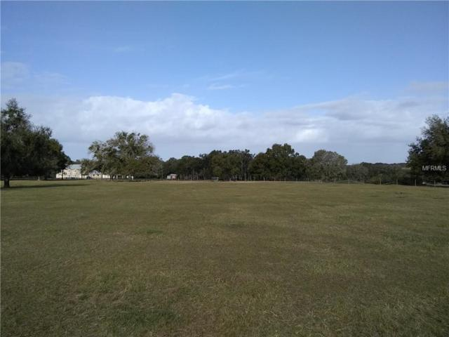 Block #124 Orange Avenue #124, Groveland, FL 34736 (MLS #G5011082) :: Griffin Group