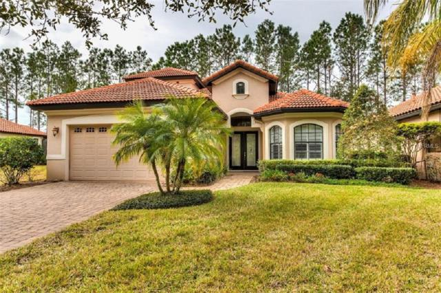 9318 San Jose Boulevard, Howey in the Hills, FL 34737 (MLS #G5011420) :: The Brenda Wade Team
