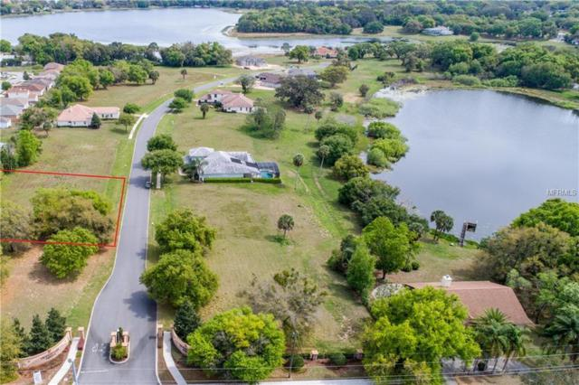 221 Two Lakes Lane, Eustis, FL 32726 (MLS #G5012910) :: Ideal Florida Real Estate
