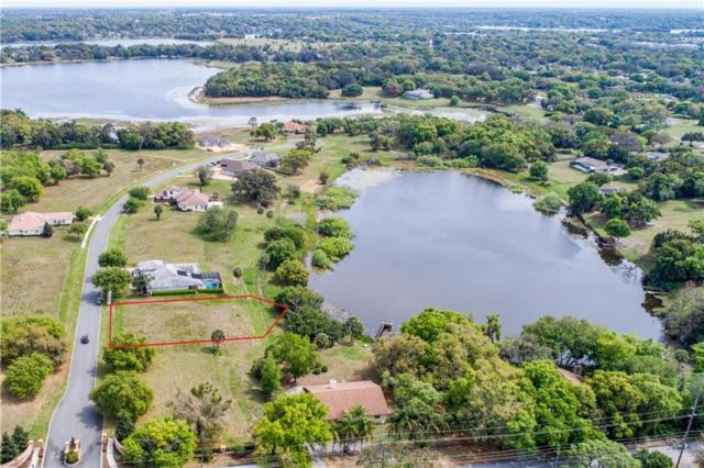 220 TWO LAKES Lane, Eustis, FL 32726 (MLS #G5012913) :: Ideal Florida Real Estate