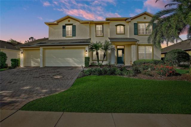 1303 Lattimore Drive, Clermont, FL 34711 (MLS #G5013655) :: Mark and Joni Coulter | Better Homes and Gardens