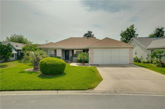 613 Juanita Court, The Villages, FL 32159 (MLS #G5014627) :: Team Bohannon Keller Williams, Tampa Properties