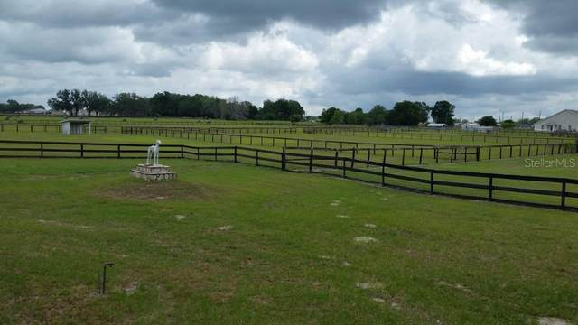 3764 County Road 214, Oxford, FL 34484 (MLS #G5015305) :: Cartwright Realty